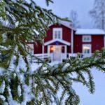 Vinter på Root